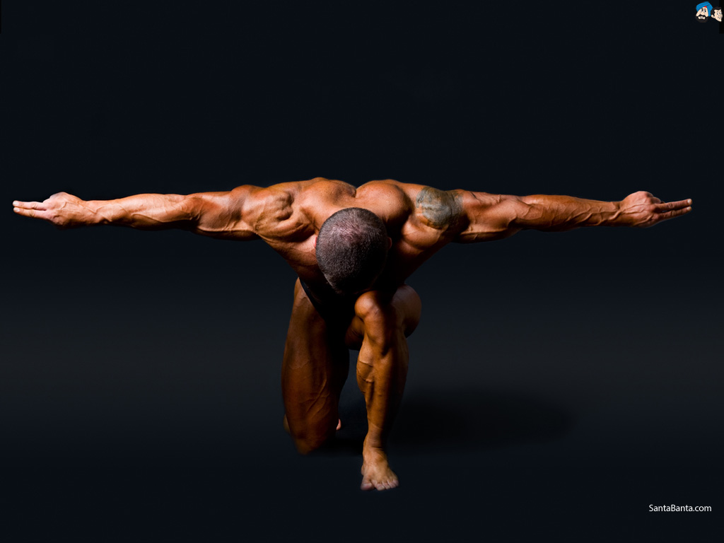 bodybuilding-44a